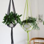 DIY-Idee halbachblog: Hängeampeln aus melierter Kordel selber knoten in schwarz-weiß und grün-weiß