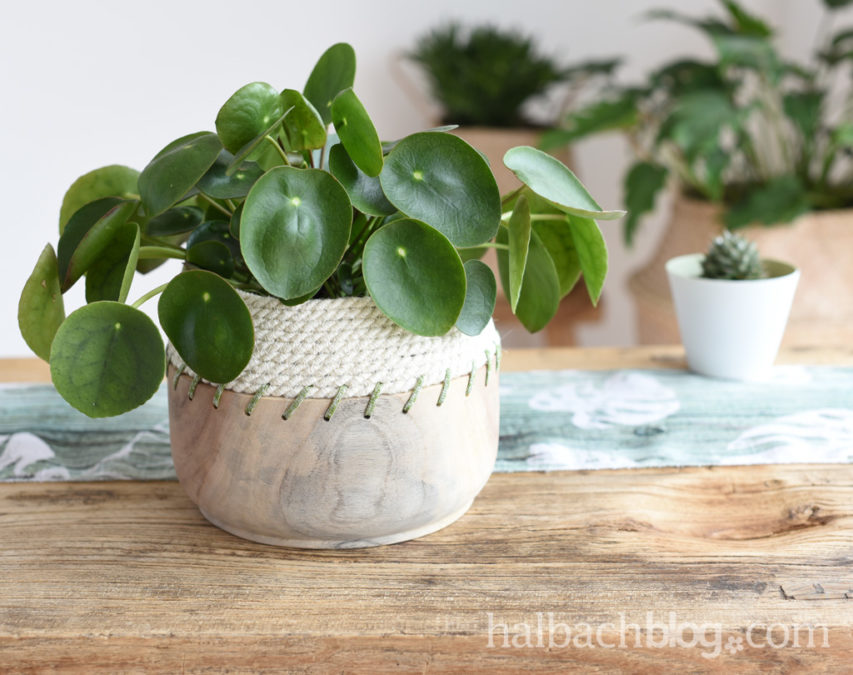 Natural Look: Jute Rope Bowl