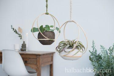 Lasst Pflanzen schaukeln – mit Bambusringen und Makramee